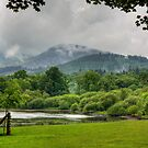 Between the Showers by Tom Gomez
