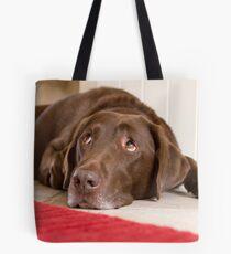 Chocolate Labrador Tote Bag