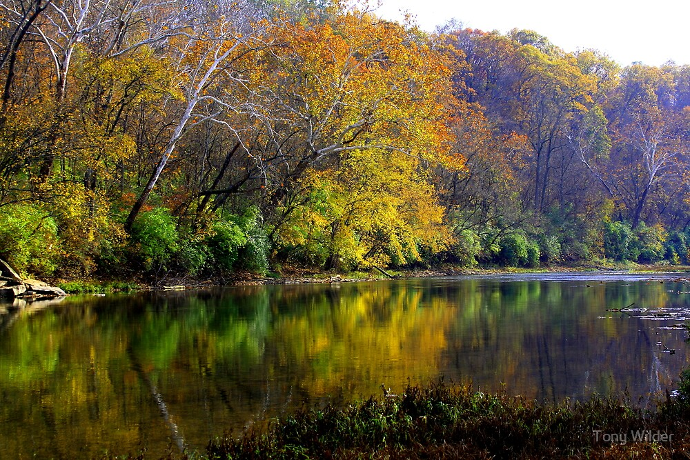 Fall 2 - Little Miami River by Tony Wilder