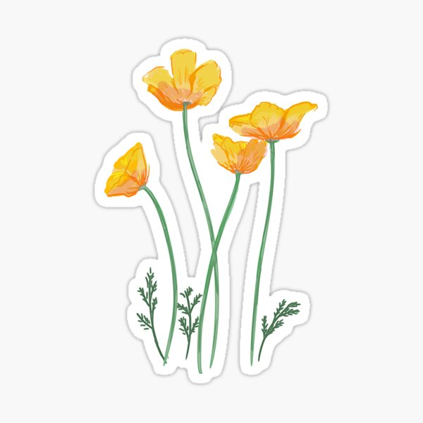 California Poppy Design Sticker