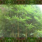 Bamboo 0413 by JBonnetteArt