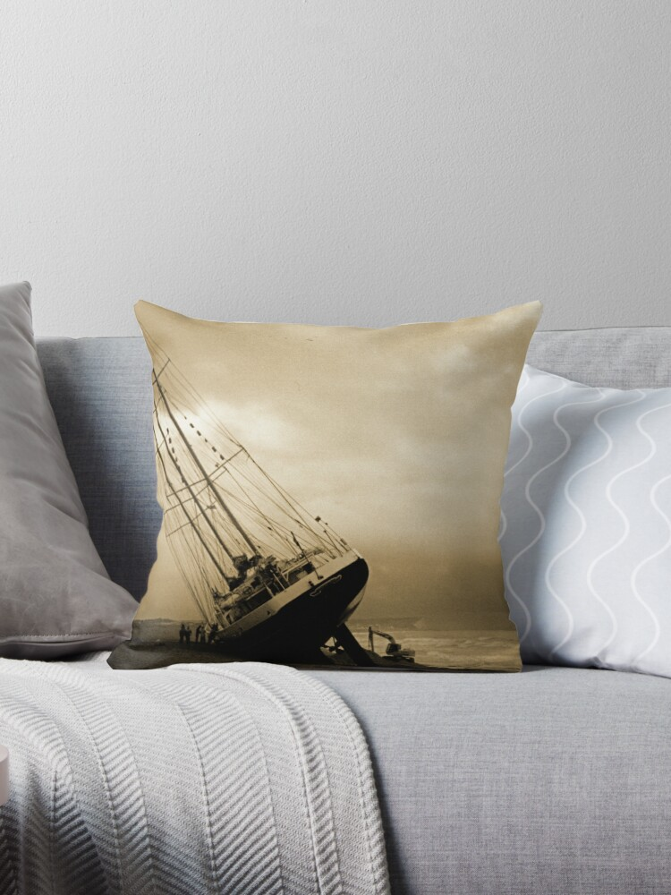 The Eendracht Aground In Seaford Bay Throw Pillow By Mikebov Redbubble