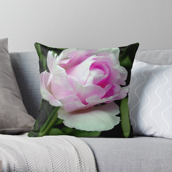 The beauty of a rose!!! © Throw Pillow