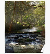 Agnes Falls, South Gippsland, Australia Poster