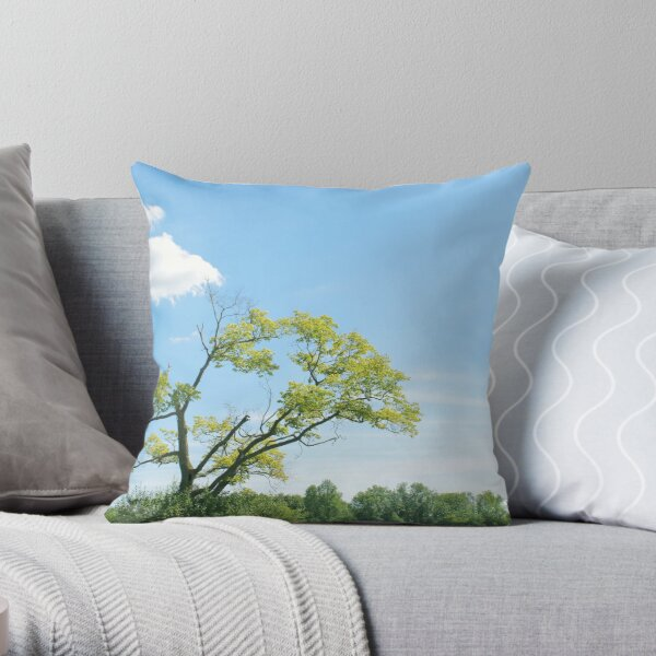 assymetric Throw Pillow