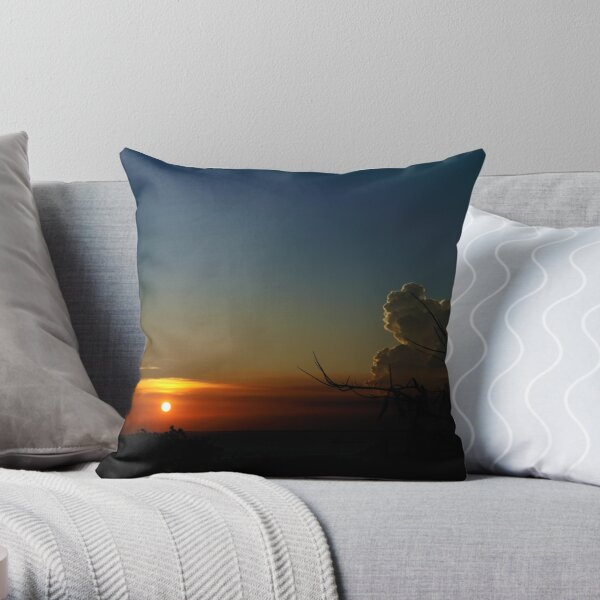 Poinciana tree silhouetted against setting sun. Vietnam Throw Pillow