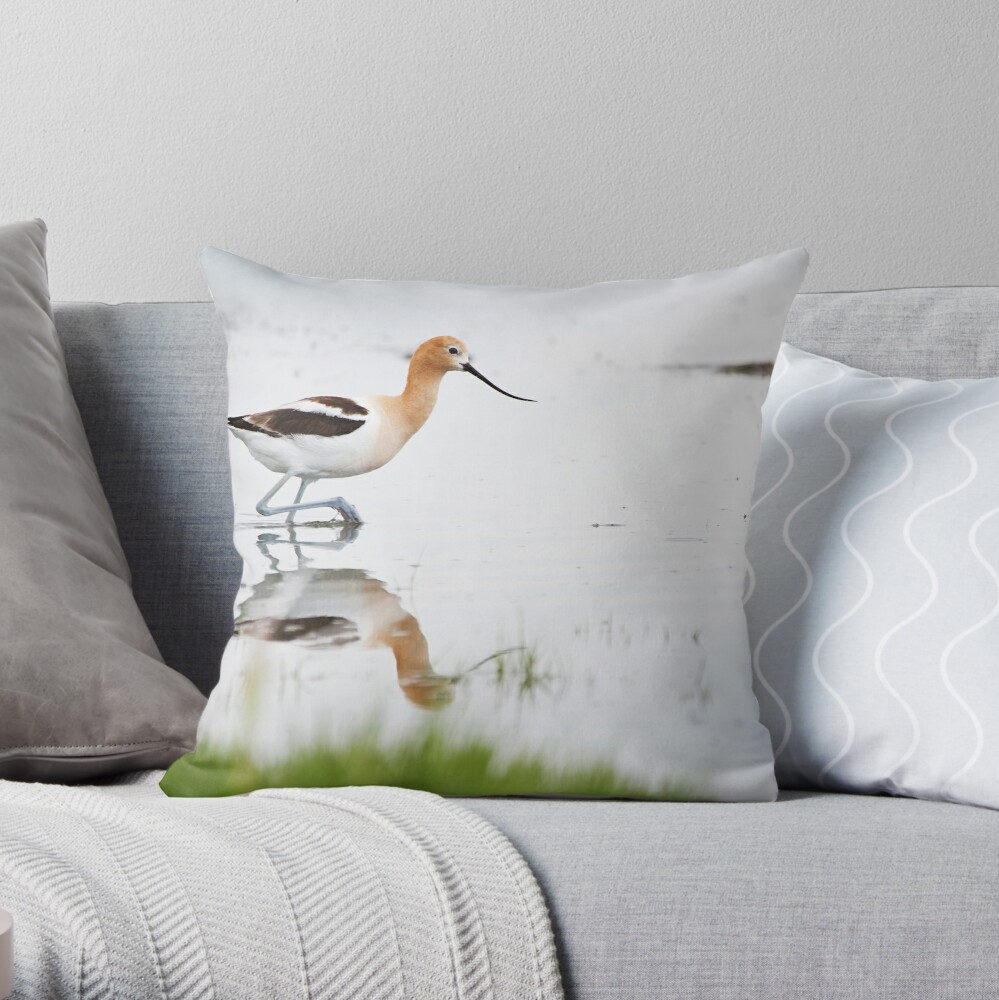 That Lovely Stride (Avocet in Central Wyoming) Throw Pillow