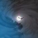 The Eagle Flight by adbetron