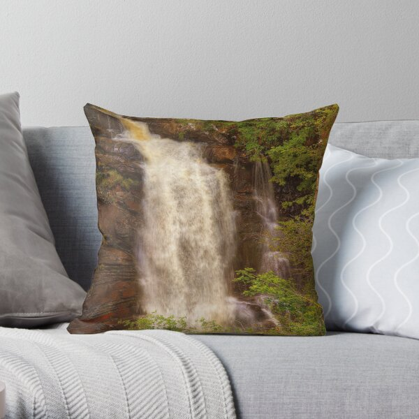 Birks of Aberfeldy (2) Throw Pillow