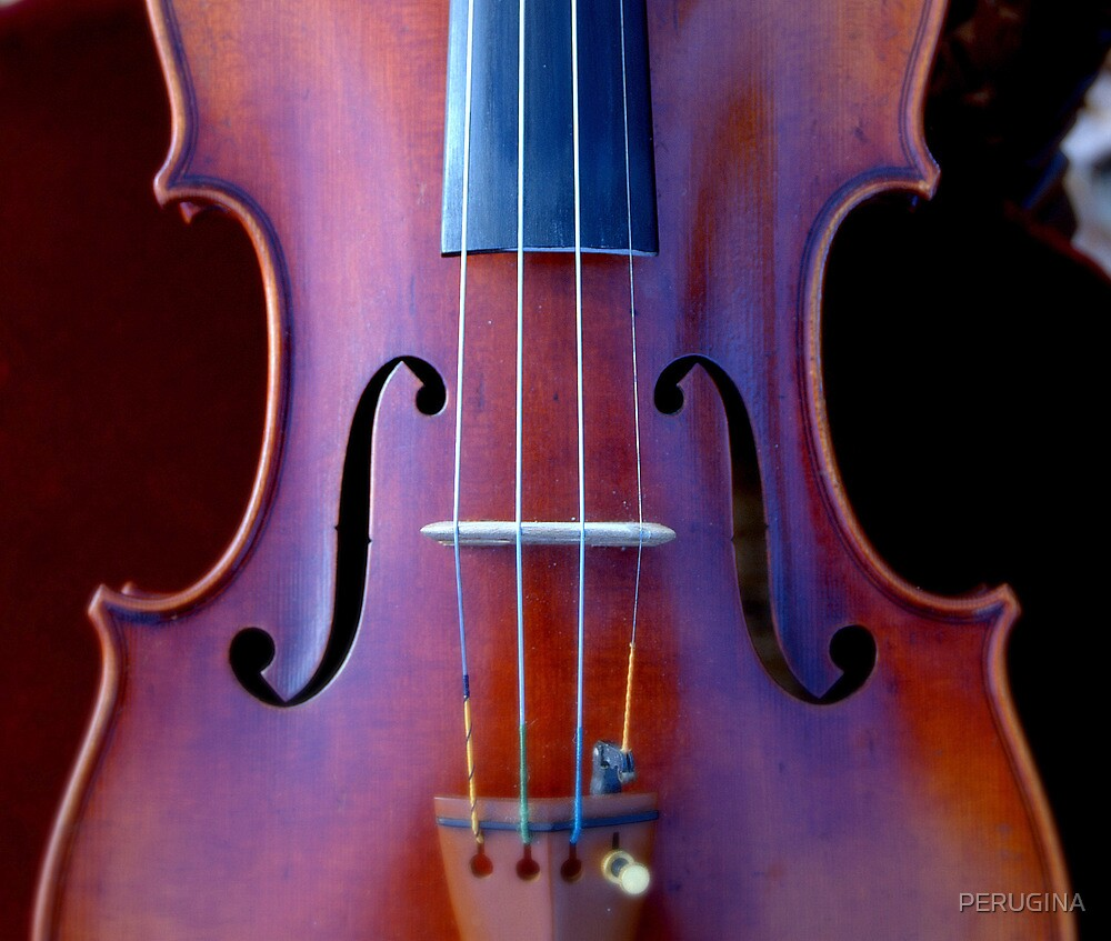 copy of Stradivarius 'Soil' 1714 © 2010 patricia vannucci  by PERUGINA
