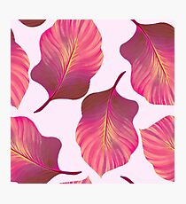 Tropical Leaves Pattern in Pink Photographic Print