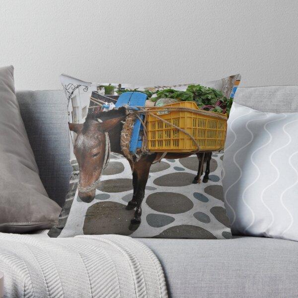 Donkey Load Throw Pillow