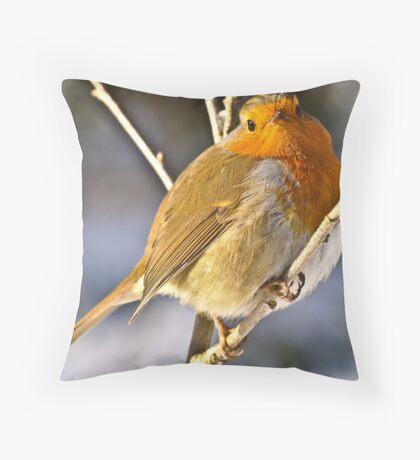Robin Macro Throw Pillow