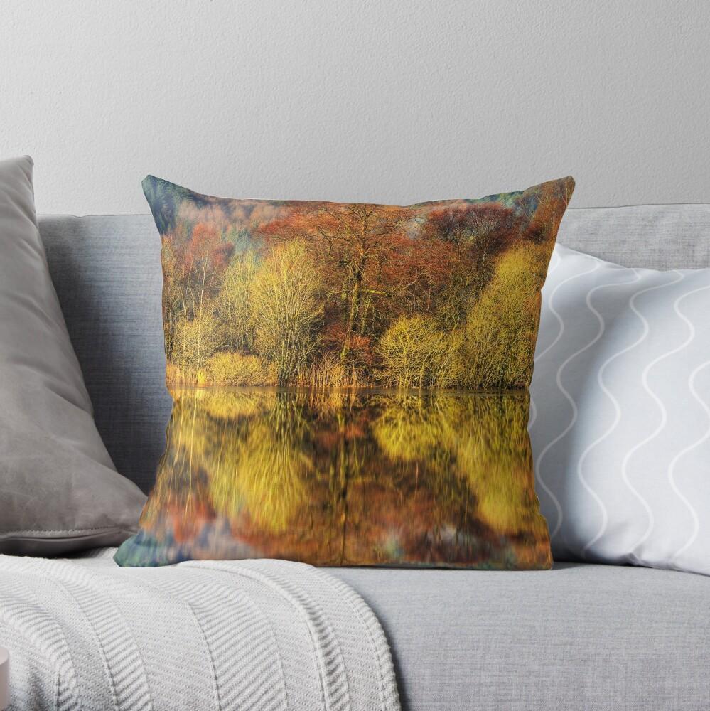 Chon Colours (1) Throw Pillow