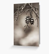 Coniferous Couple Greeting Card