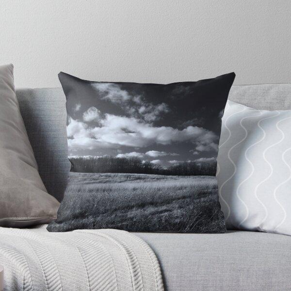 Meadow in November Throw Pillow