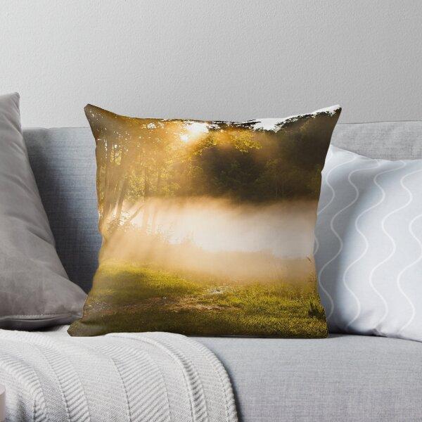On a Beam of Light 2 Throw Pillow