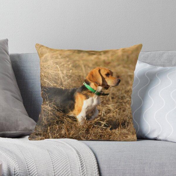 Green Country Beagles Throw Pillow