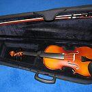 Meine Geige von BlueMoonRose