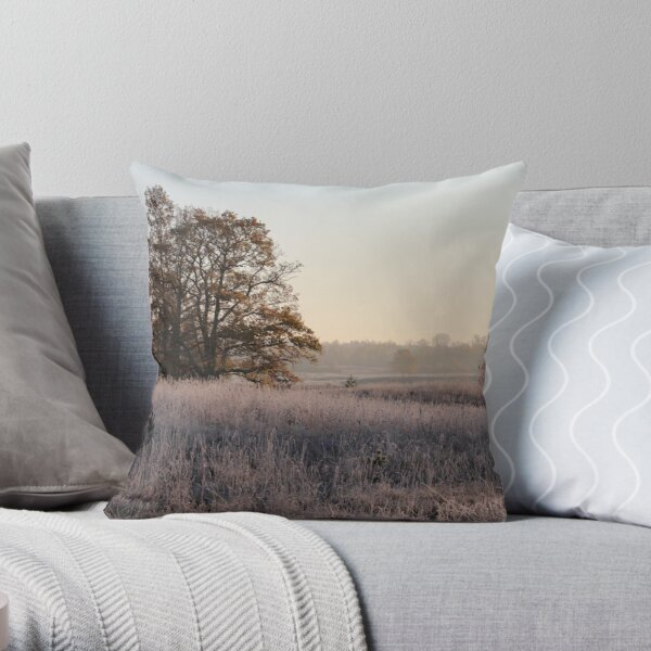 First frost, and tree in autumn colors Throw Pillow