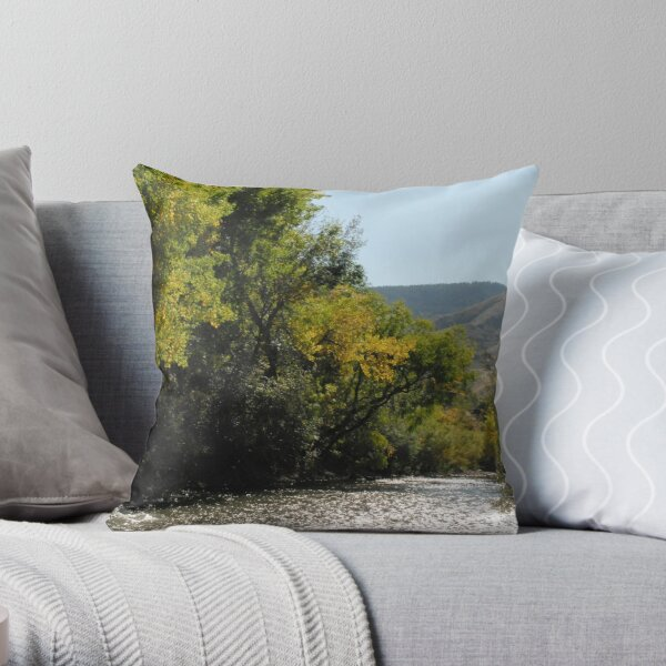 River Through Golden Throw Pillow
