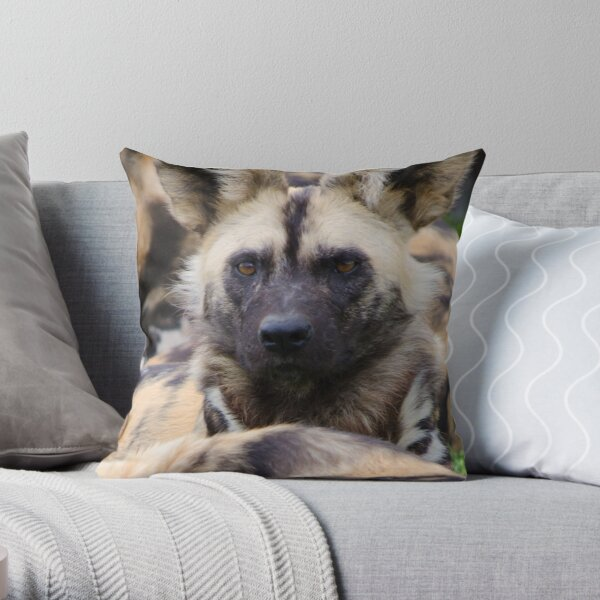 Painted Dog Throw Pillow