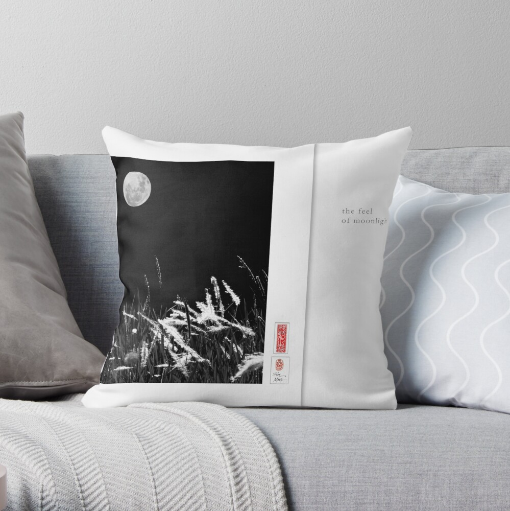 Mindfulness In Monochrome - Moonlight Throw Pillow
