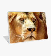 Lions Eye Laptop Skin