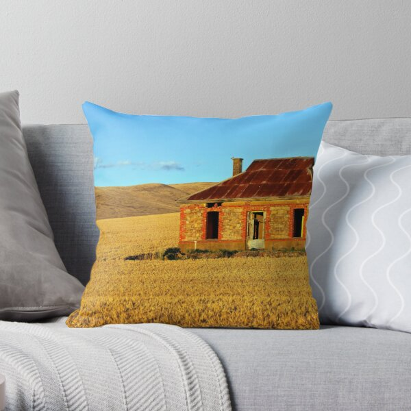 Abandoned Mid North Homestead Throw Pillow