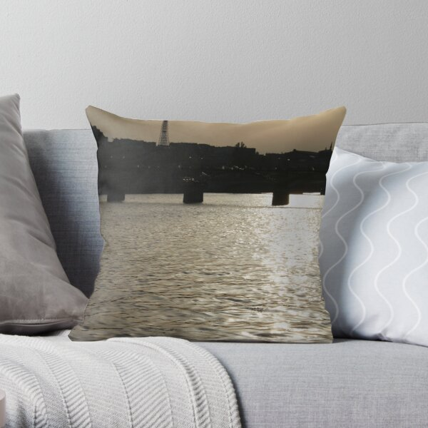 Paris - Seine reflections August 2011 Throw Pillow