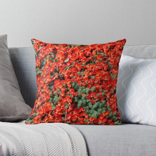 Red Lechenaultia 2 (L. formosa) Throw Pillow