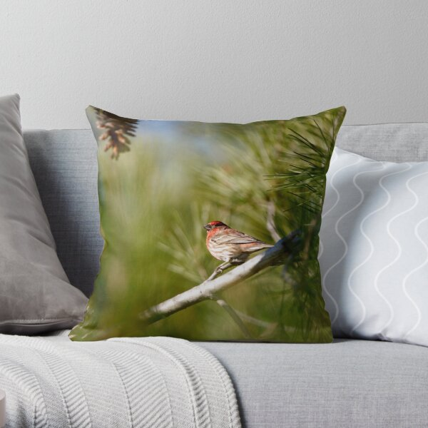 House Finch on Green Throw Pillow