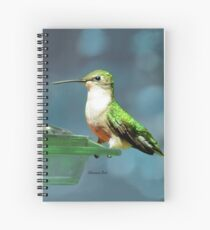 Tiny Backyard Visitor ~ Hummingbird Spiral Notebook
