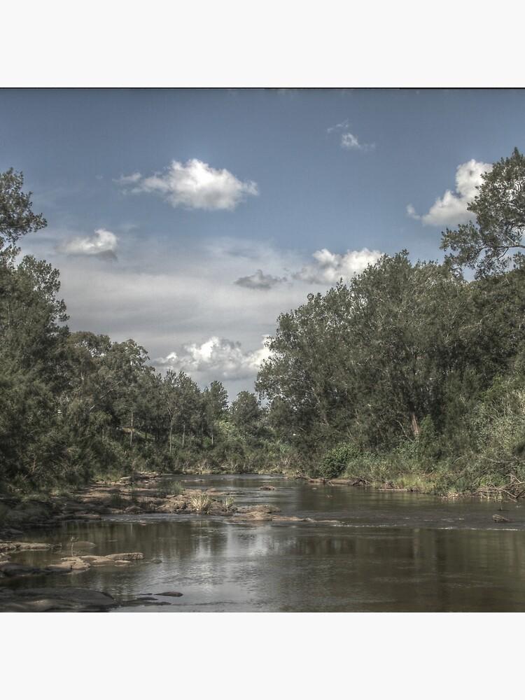 Richmond River by theoddshot
