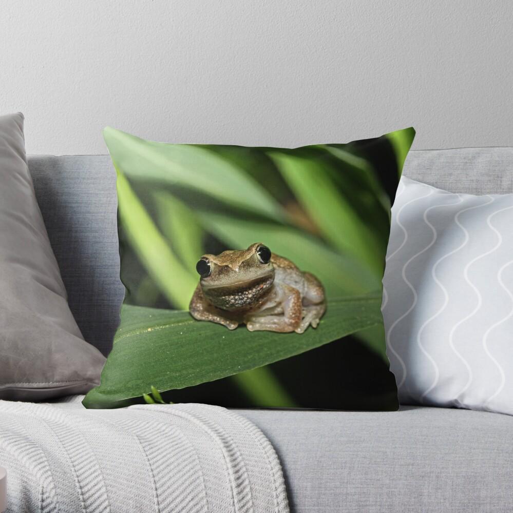 Hello Frog Throw Pillow
