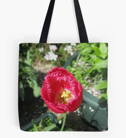 A Solitary Tulip Tote Bag