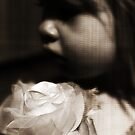 The Fake Silk Rose #2 by SquarePeg