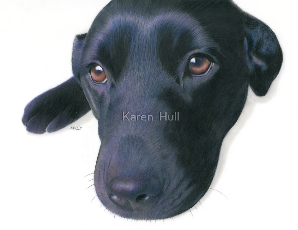 Dee Dee by Karen  Hull