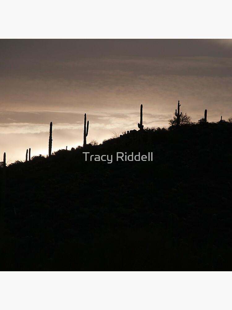 Cacti on the Ridge by taos
