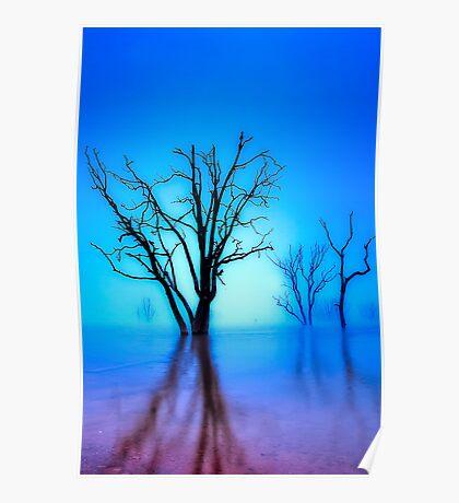 Foggy Dawn at Lake Eildon #1 Poster
