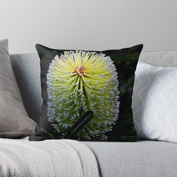 Banksia aemula  Throw Pillow
