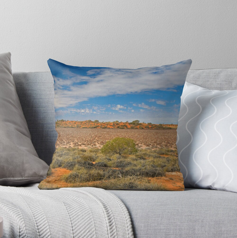 Lake Disappointment Throw Pillow