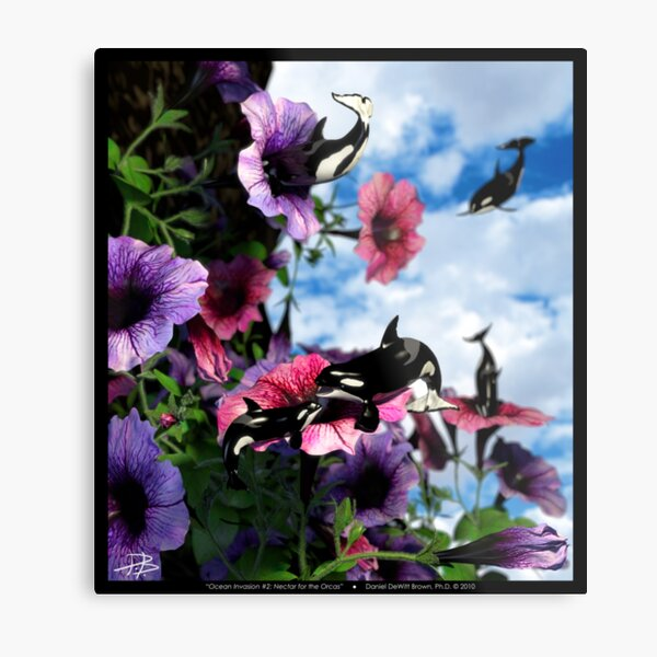 Ocean Invasion #2: Nectar for the Orcas Metal Print