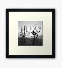 Foggy Dawn at Lake Eildon #2 Framed Print