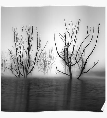 Foggy Dawn at Lake Eildon #2 Poster