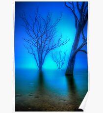 Foggy Dawn at Lake Eildon #3 Poster