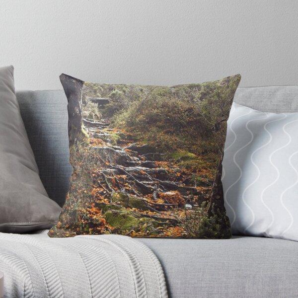Natures Garden Path Throw Pillow