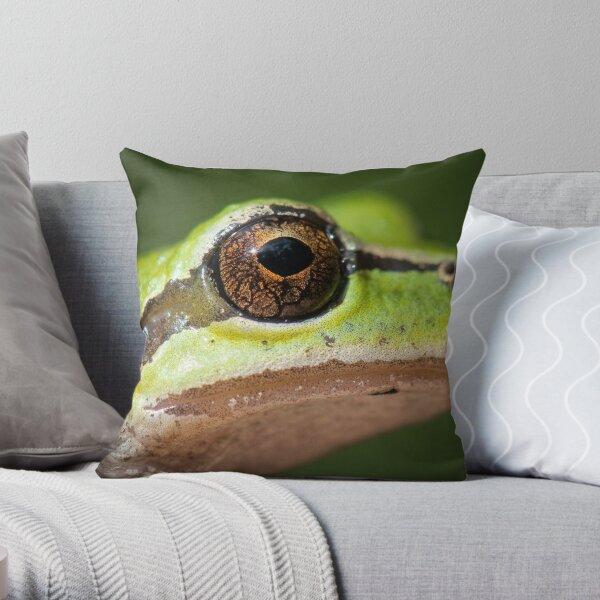 Frog's Eye Throw Pillow