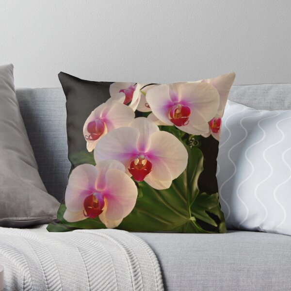 ***DELICATE GRACE ~ ORCHID PHALAENOPSIS*** Throw Pillow