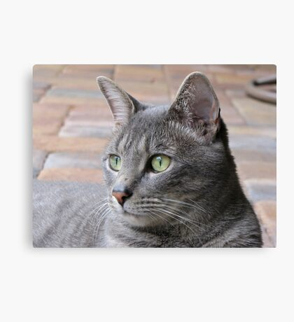 Relaxin' on the Porch Canvas Print